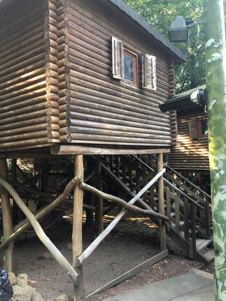 Хотел на дърво